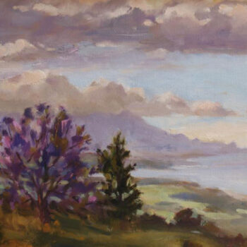 Passing Clouds by Artist Jan Bushart