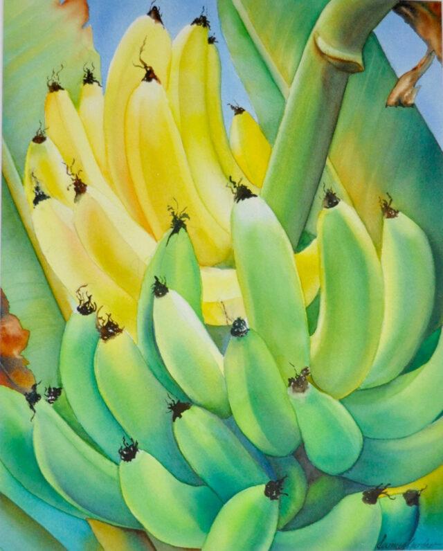 Gone Bananas by Artist Carmen Gardner