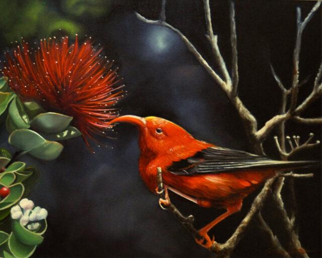 Maika'i Iiwi by Artist Carmen Gardner