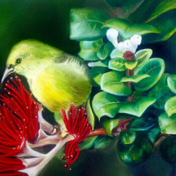 Na Amakihi O Maui by Artist Carmen Gardner