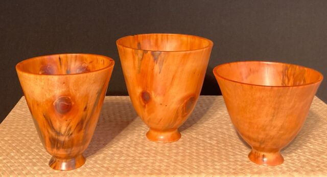 Translucent Norfolk Pine Bowls by Artist Kelly Dunn