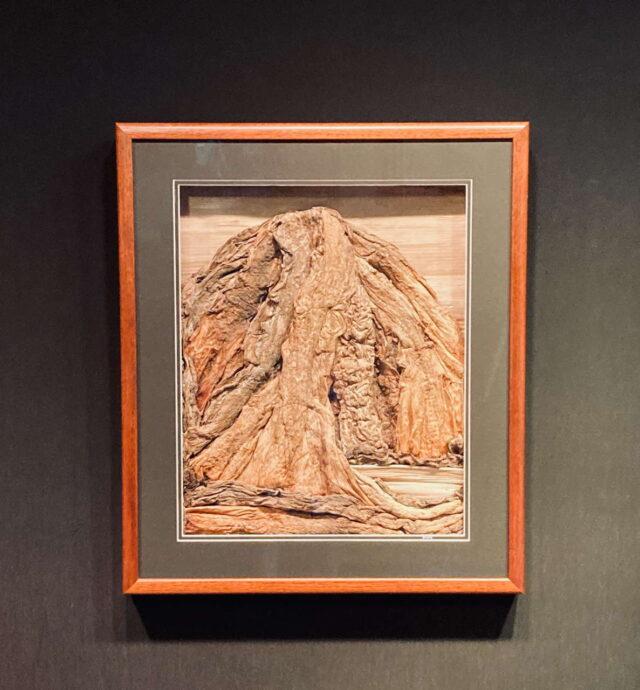 Fiber Form Sculpture by Artist Matthew Wescott